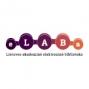 eLABa PDB ir ETD mokymai pradedantiesiems kolegijų naudotojams